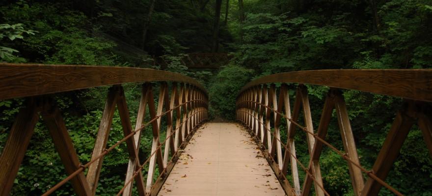 Bridge-880x400