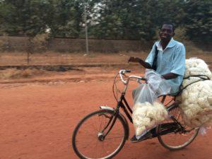 sambo-with-bike