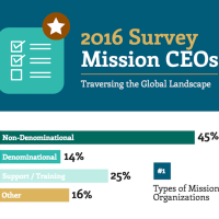 CEO Survey Infographic
