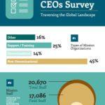 Mission CEOs Survey