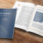 CEO Survey Report Page Sample