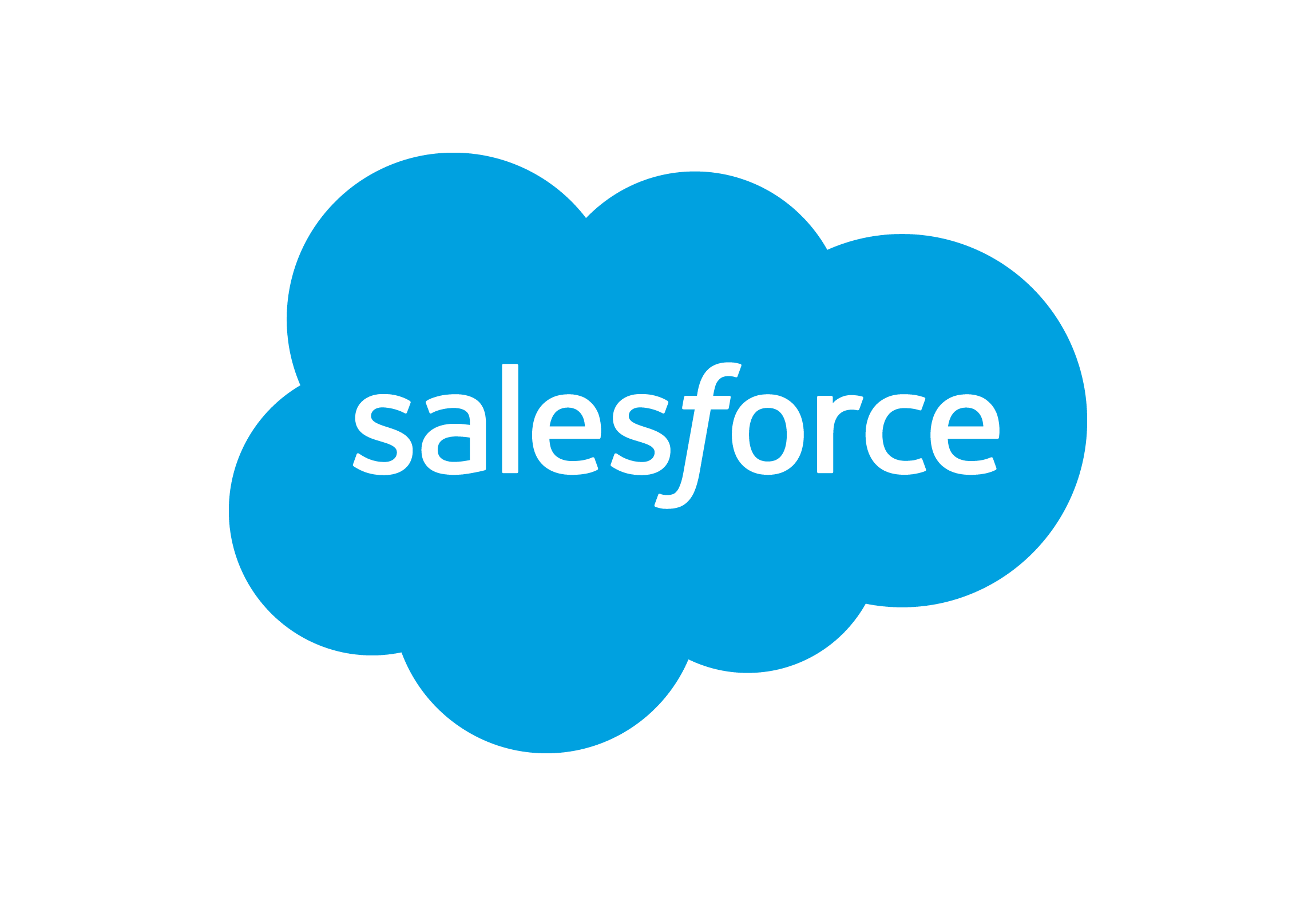 Salesforce Conversion Project Leader